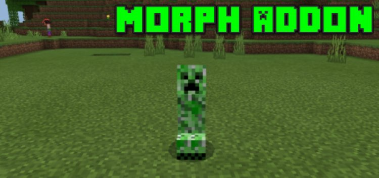 Morph Addon (Xbox One and PS4 Supported)